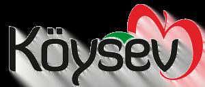 koysev.com